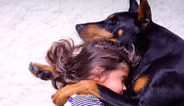 This 3-Year-Old and her Doberman Are the Cutest Friends Ever