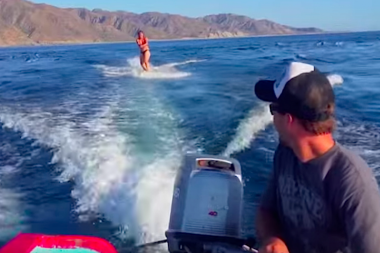 Dolphin Pod Surprises Wakeboarders And Starts Surfing With Them